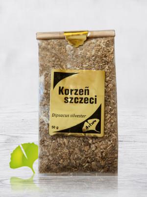 korzen-szczeci750x1000